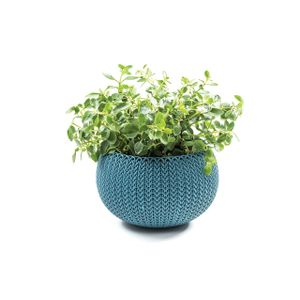 Vaso-Cozies-XS-Keter-Azul