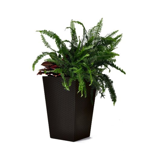 Vaso-Rattan-Style-Planter-M-Keter-Marrom